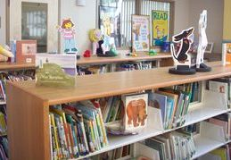 Books on shelves in an elementary school library.