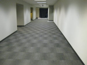 Professional Development Building New Carpet
