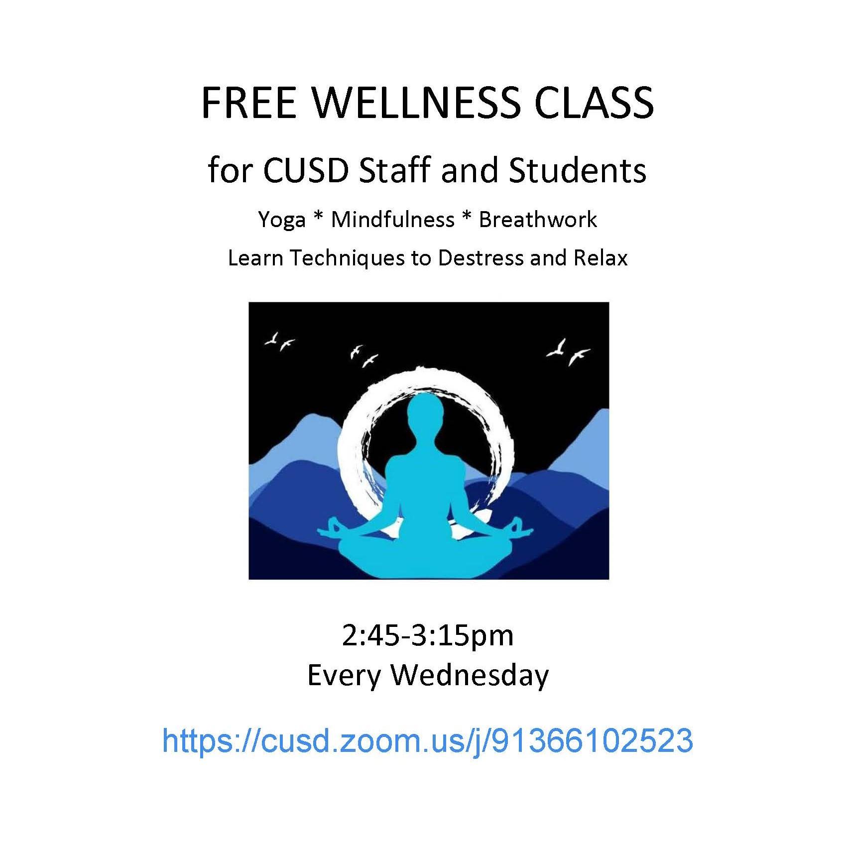 CUSD Wellness Class Flyer