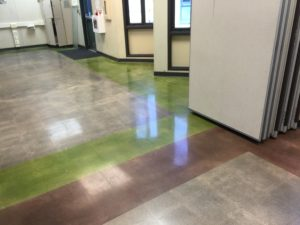 Polish Concrete Floor