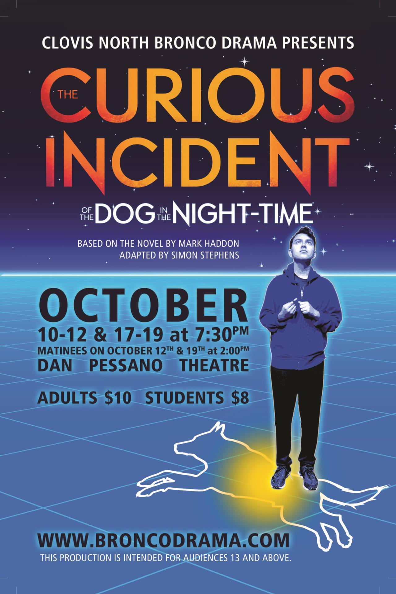 Curious Incident Poster