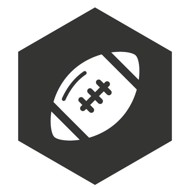 Footbal icon
