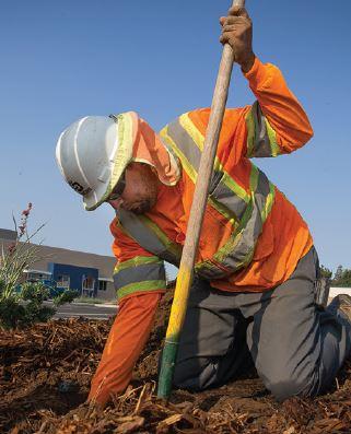working digging